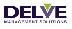 Delve Management Solutions